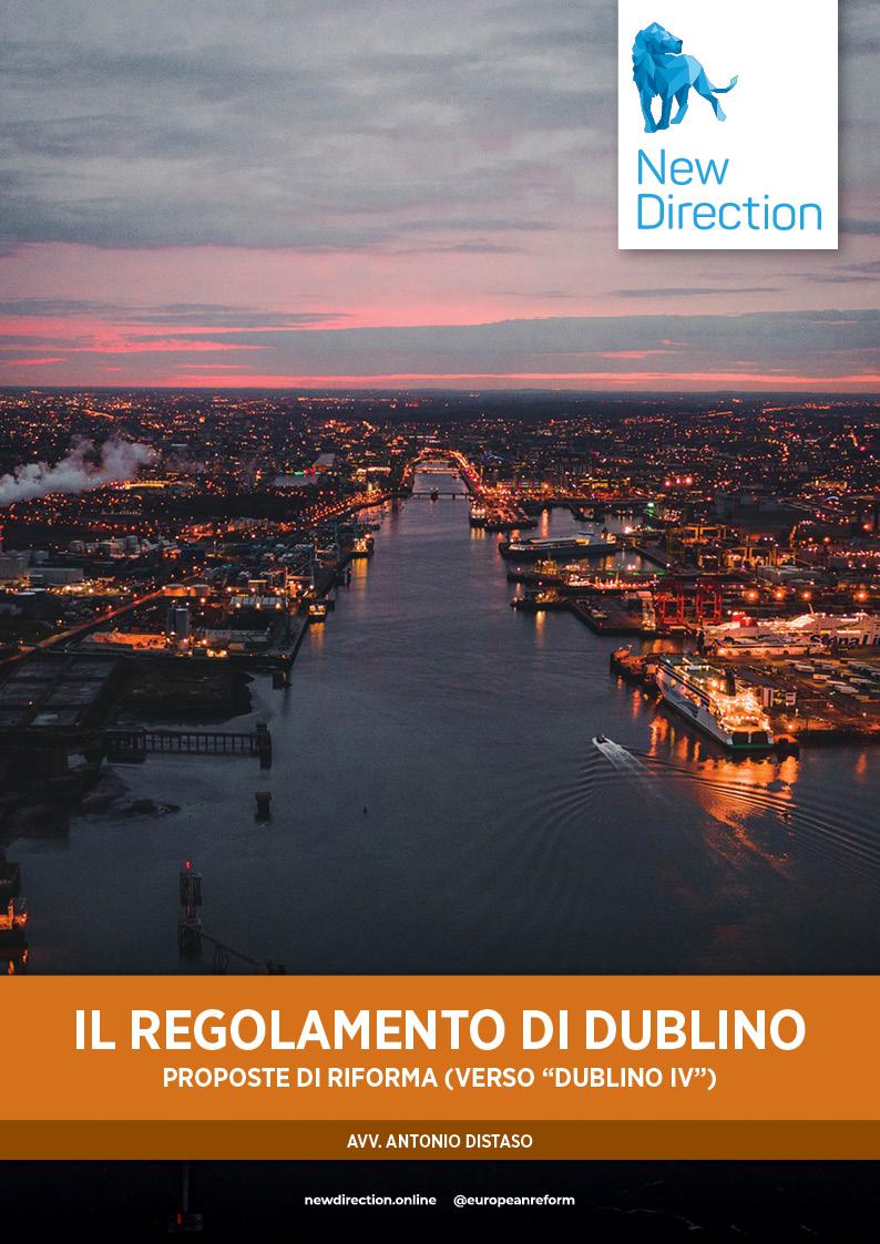 """IL REGOLAMENTO DI DUBLINO - PROPOSTE DI RIFORMA (VERSO """"DUBLINO IV"""")"""