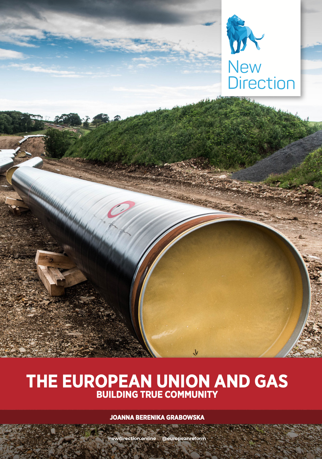 THE EUROPEAN UNION AND GAS BUILDING TRUE COMMUNITY